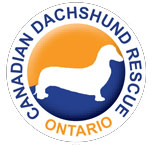 dachshundRescue_logo_1